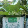 grow bag purchase online methods