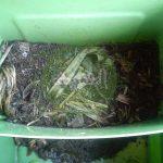 Portable Vermi Compost - പോര്ട്ടബിള് മണ്ണിര കമ്പോസ്റ്റ്