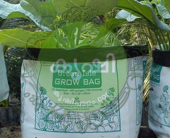 മാലിന്യ സംസ്കരണം ഗ്രോബാഗുകള് ഉപയോഗിച്ച് - waste management using grow bags 1