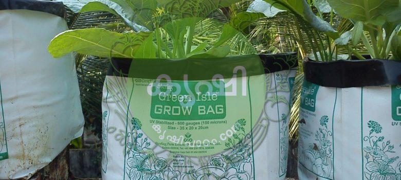 മാലിന്യ സംസ്കരണം ഗ്രോബാഗുകള് ഉപയോഗിച്ച് - waste management using grow bags 2